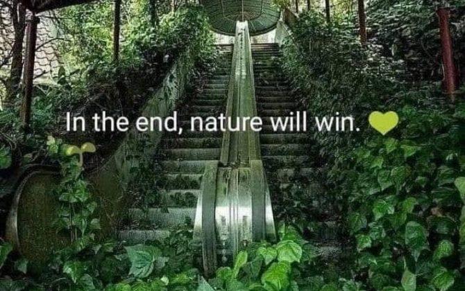 Magija nevidnega dela narave